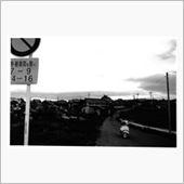 早朝、農道にて(ジョーカー、中型カメラ)