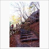 梯子場・・・<br /> 基っ<br /> 階段場・・・<br /> コース一難関?<br /> ポイントです。。。