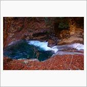 落ち葉対源流水。<br /> ミネラル豊富な水の理由でしょうか・・・