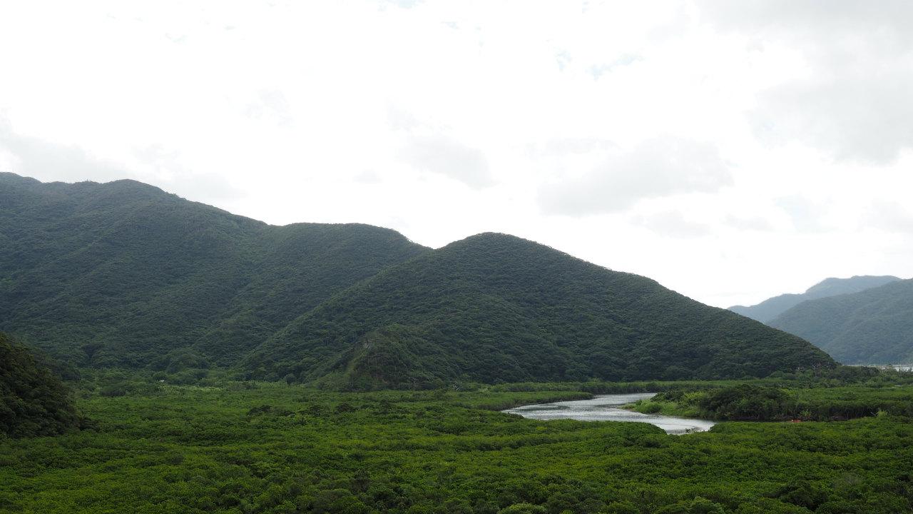 最終日にマングローブの森を見てみました。<br /> <br /> 奄美大島ははじめて来ましたが、地理的には沖縄に近いのに、文化は鹿児島県(実際、鹿児島県なのだが)というのが面白いと思いました。<br /> それは過去の歴史を調べると多少は納得なんですがね。<br /> 例えば墓なんかは、沖縄地方では家のような形をした立派なものをたてて盆には一晩中墓の前で宴会をするらしいですが、奄美地方は本州でも見かける普通の墓石です。<br /> 島の地形的にも、わりと平坦な沖縄地方と違い、奄美地方は急峻な地形でまるで和歌山の山奥にでもいるかのような錯覚をする地域もあります。<br /> <br /> そして、なぜかダイハツMAXが異常に多いです・・・(・ω・)