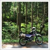栃木県鹿沼市の林道