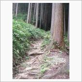 飯道山 その2