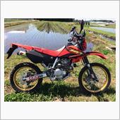 私のXR250