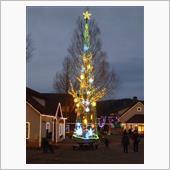丹後地方一の大きさを誇る<br /> クリスマスツリー<br /> <br /> ( ̄~ ̄;) ウーン<br /> もっとお客さん多いかと思ってたけど<br /> 何だか少なくって寂しい感じ