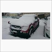 2016 雪