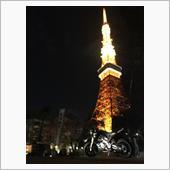 東京タワーを見に行ってきた