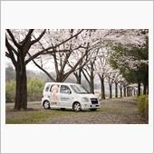 桜と車2016