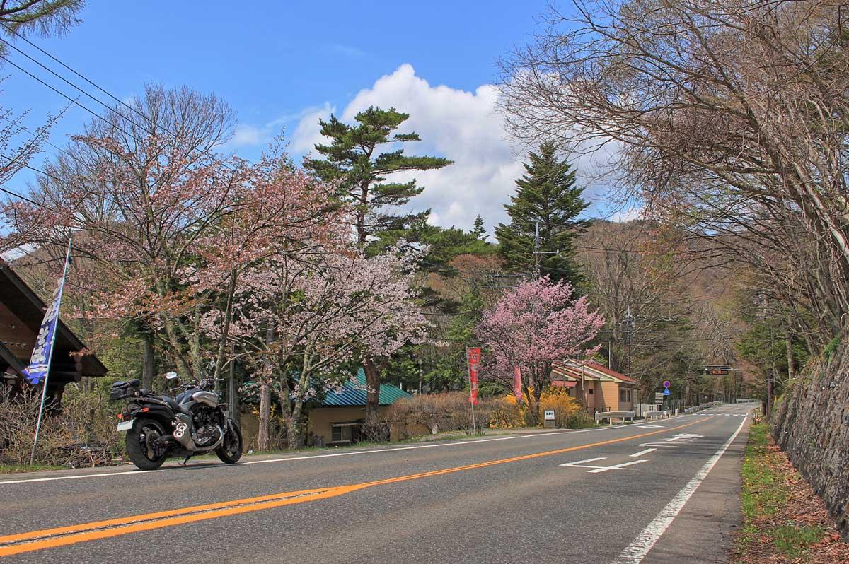 GWも終盤、Uターンラッシュも終わったことだし、地方のリゾートも空いていると予想して行ってみました。<br /> <br /> 案の定、全く混まずストレスなく走れます。<br /> 天気もよく新緑も目に優しいため、景色を愛でながらゆったり走ります。<br /> <br /> ここは中禅寺湖畔の菖蒲が浜付近。桜がまだ咲いています。