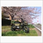 桜とモトラ