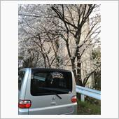 桜とのツーショット