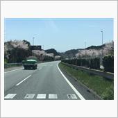 沼津ドライブ