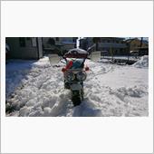 モンキーバハ雪に負ける!