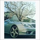 桜とCLS