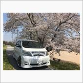 桜と相方(´∀`*)