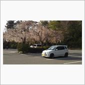 枝垂れ桜とワークス