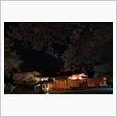 桜散る。 -夜編-
