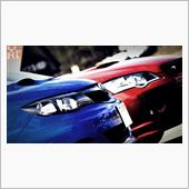 L.T.P.S -WR BLUE × GARNET RED-