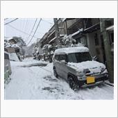 毎年1〜2回の大雪☃️