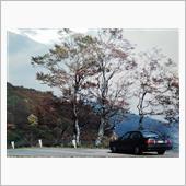 秋のAudi 80 2.0E Sport
