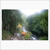 2017年11月23日:河津七滝⑱ 河津七滝ループ橋