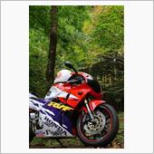 nc35 rvf400 album