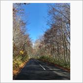 八甲田経由で十和田湖へ紅葉ドライブ