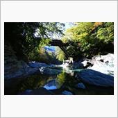 四国旅行(かずら橋)