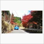 紅葉を見に…長谷ダム周辺と峰山高原