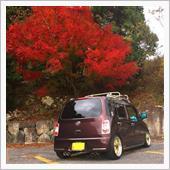 滋賀県☆cocoa