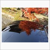 秋を感じてますか?(*`・ω-)(丸目version)