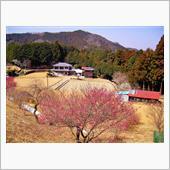 第100回 SWIFTで巡った さいたま・武蔵の国の四季