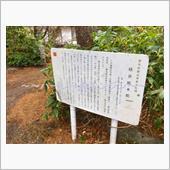 テレビ朝日「帰れマンデー見っけ隊!! 見て行った。