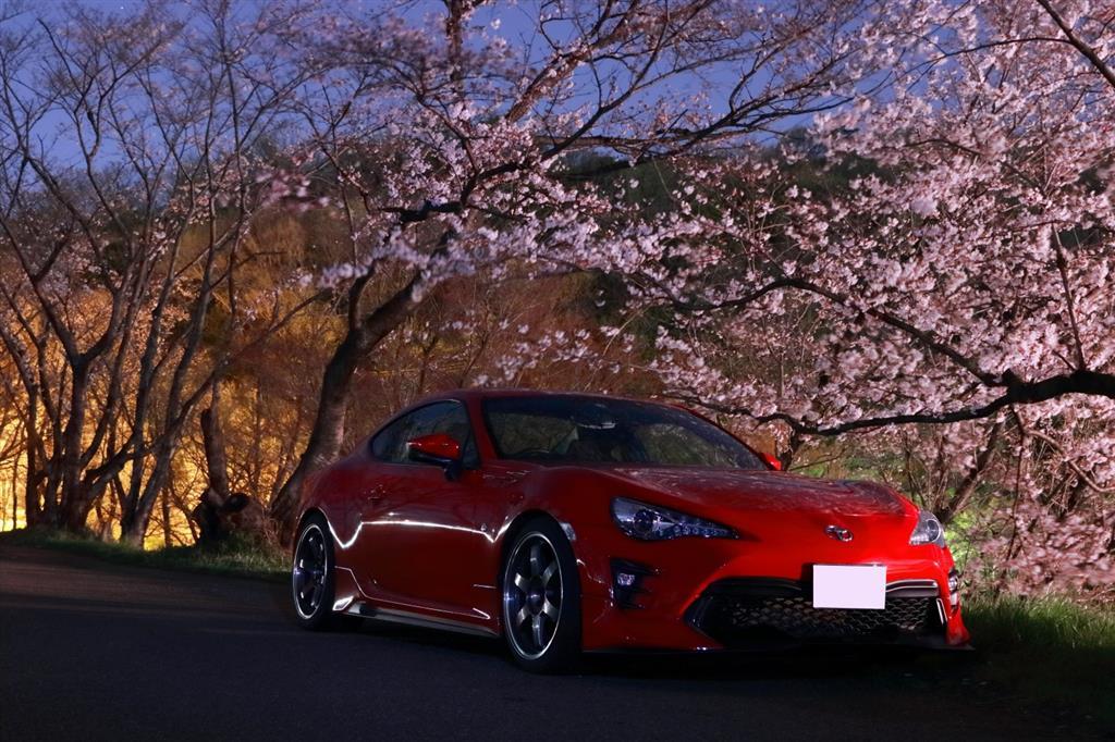 水曜日、お誘いを受けたので仕事終わってその足で夜桜撮影会へ。<br /> 久しぶりにRAWで編集したので色合いがナチュラル(^^;