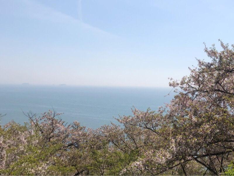 海と桜、最高の景色‼️ <br /> ☆いつまでも眺めていたい気分👍💯