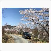 ドナドナ前にお花見ドライブ!