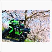 春×ZX-6R