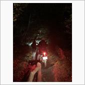CD106 久々の夜間林道
