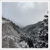 目が覚めたら、雪が❄️降っていたので、バイクに乗るのは断念し、車で金剛山へ!