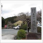 上杉定正の墓