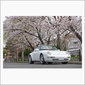 桜を見る会2021(2021.03.27)