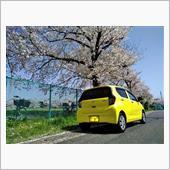 桜とレモンスカッシュ 2021