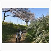 haru....春やね