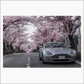 長瀞の桜🌸横構図ver.
