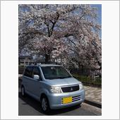 今年の桜はちょっと長い 2021.4