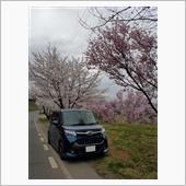 令和三年春 桜とTANK
