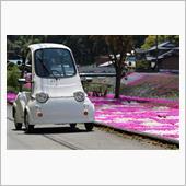 2021年の芝桜とMC1