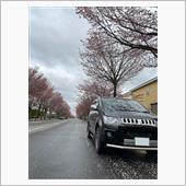 千歳のとある桜道にて🌸