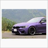 AVERY DNNISION Matte Metallic Purple