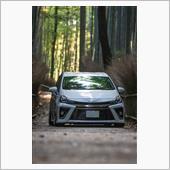 ⛩京都の鉄板映えスポット✨