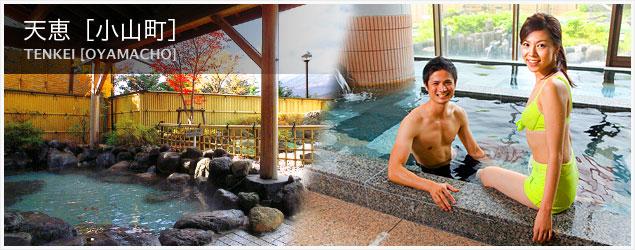静岡県の日帰り温泉~源泉かけ流し、露天風呂、食 …